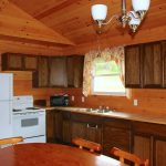 Chemong #2 Cabin Kitchen - Fernleigh Lodge - Lakeside Cottage Rentals
