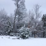 Winter scene after first snowfall - Fernleigh Lodge.